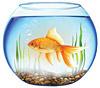 Цены на аквариумы в Одессе