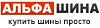 Альфа Шина, интернет-магазин