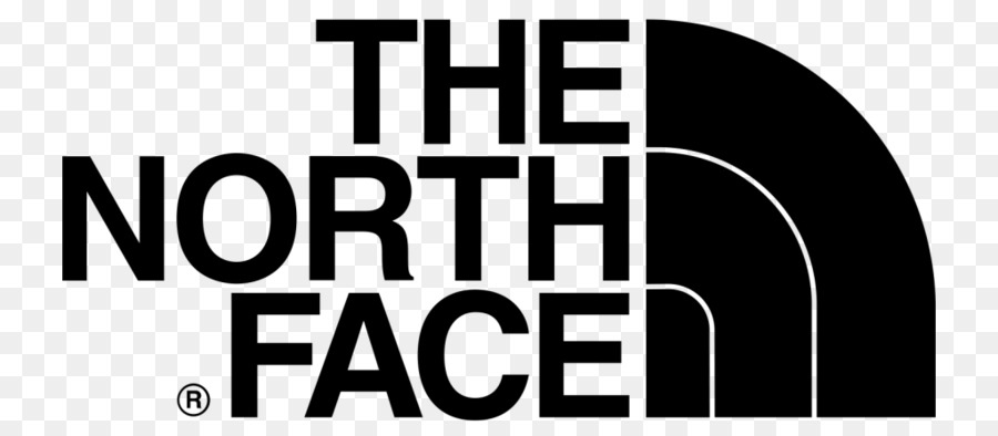 Кроссовки The North Face