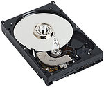 Фото Western Digital AV 160 GB (WD1600AVJS)