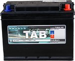Фото TAB Motion Tubular C20 110 Ah (0) (122812, 90T)