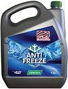 Фото Profex Antifreeze Professional Green -42 10л