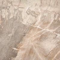 Фото ABK Ceramiche грес (керамогранит) Fossil Stone Beige 50x50 (FSN24100)