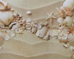 Фото Атем декор-панно Yalta Seashells 40x50 (комплект 2 шт)