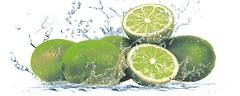 Cerrol декор Lemon Centro 1 20x50