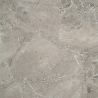 Cersanit грес (керамогранит) КАЛСТОН (CALSTON) Серый 42x42
