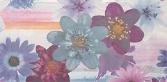 Фото Fanal декор Iris Flor 2 Nasar 32.5x60