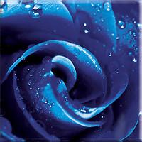 Ceramika Paradyz декор стеклянный UNIWERSALNE DECORACJE ROZA 20x20