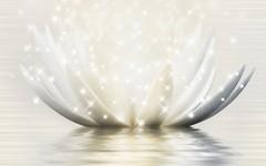 Golden Tile декор Magic Lotus кремовый 25x40 (19Г331)