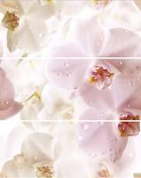 Cerrol декор-панно Porto Komplet Flower 60x75 (комплект 3 шт)