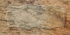 Oset грес (керамогранит) Дженова Натуре 15.4x31