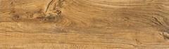 Cerrad грес (керамогранит) Canua Honey 17.5x60