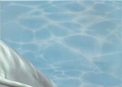 БерезаКерамика декор Лазурь Дельфин 2 бирюзовый 25x35