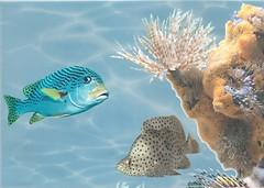 БерезаКерамика декор Лазурь Морской мир 5 бирюзовый 25x35