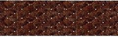 Фото Elfos Ceramica плитка настенная Caprice Marron 15.5x50