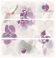 Фото APE декор-панно Newport Set (3) Seduction Purpura/Negro 60x60 (комплект 3 шт)