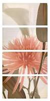 Фото APE декор-панно Elegance Set (4) Euphoria Crema 126.4x63.2 (комплект 4 шт)