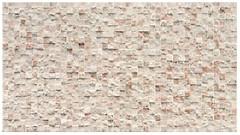 Realonda плитка настенная Toronto Ivory 31x56