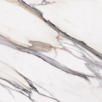 Фото Halcon плитка напольная Calacatta Blanco 60.8x60.8