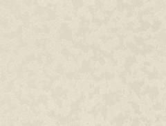 Rasch Dovizia 2015 575521
