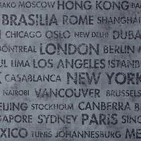 Caselio Passport 66566066