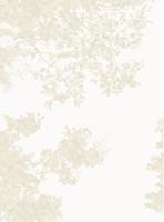 Casadeco Geode (GEO 2689-11-06)