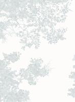 Casadeco Geode (GEO 2689-91-27)