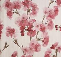 BN International Sakura 18581
