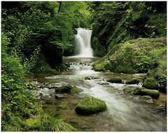 Komar Products Ellowa Falls 8-047