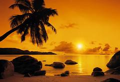Фото Komar Products Sunset 8-316