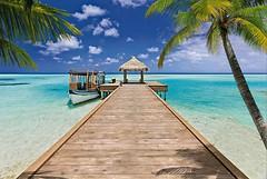 Фото Komar Products Beach Resort 8-921