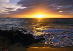 Фото Komar Products Makena Beach 1-607