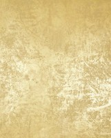 Фото Marburg Wallcoverings La Veneziana 2 53131