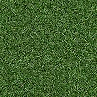 IVC Leoline Surfaces Grass 25