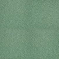 Фото DLW Scala Looselay Pur Basic Shade Green (65113-106)