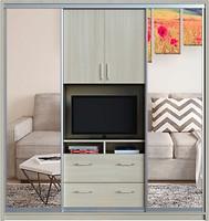Zevs Мебель Шкаф-купе TV Зеркало+TV+Зеркало 2700x450x2400