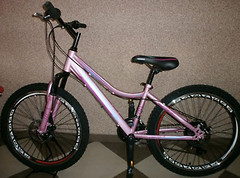 Фото Crossride Molly Lady 24
