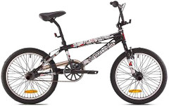 Фото Bottecchia Freestyle 20