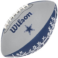 Фото Wilson NFL Mini Team Logo