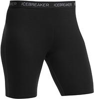 Фото Icebreaker Zone Shorts Women 200 шорты