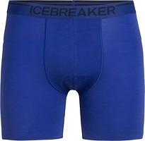 Icebreaker Anatomica Boxer Long Men 150 трусы