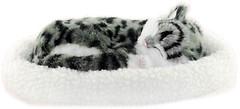 Фото Perfect Petzzz Дышащий серый кот (TS08-C07)