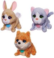 Hasbro Поющие зверята (B0698)