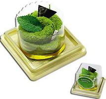 Фото Unique Cake Мусс золотисто-зеленый 25x25