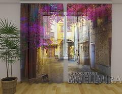 Фото Wellmira Арка в цветах 260x250