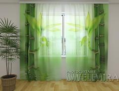 Wellmira Зеленый бамбук 260x250
