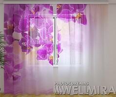 Wellmira Малиновая нежность 260x250