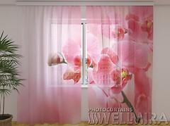 Wellmira Розовая орхидея 260x250