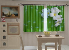Wellmira Бамбук в кухне 150x250