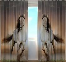 Wellmira Две лошади 260x250